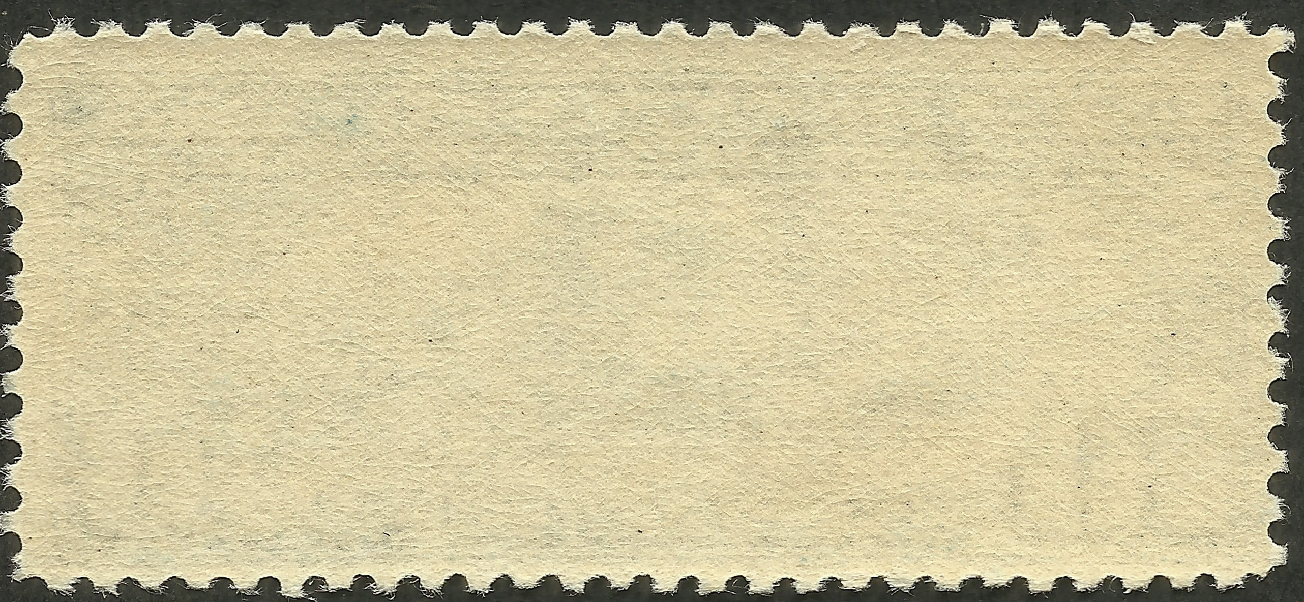 Stamp gum - on the back of a U.S. mint, never hinged stamp (#C10, 1927)